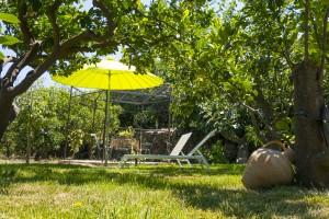 CasaReginaPacis - Il giardino
